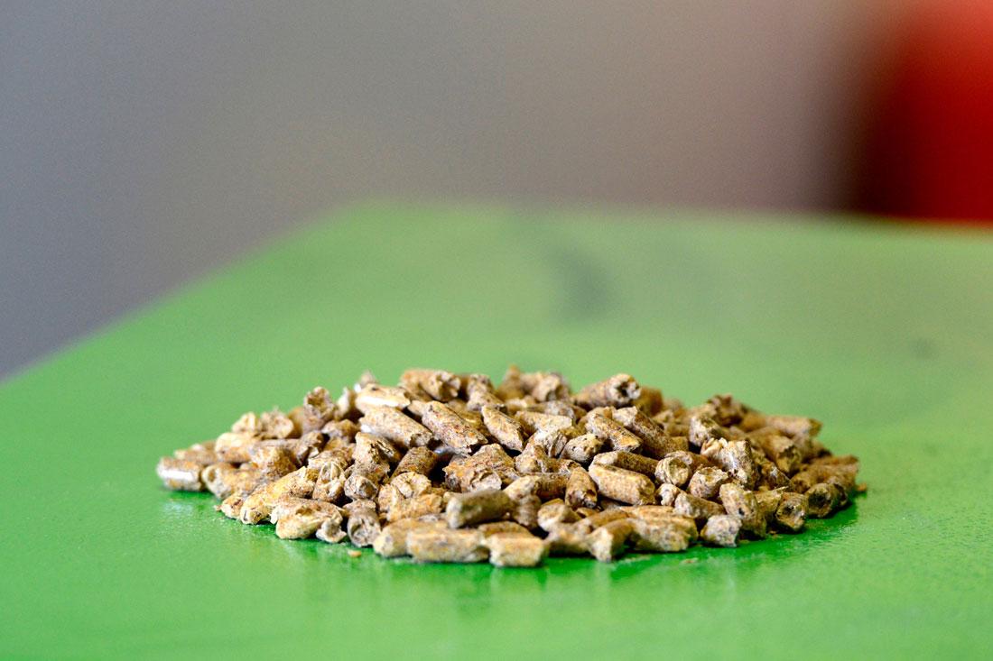 Houtpellets biomassa